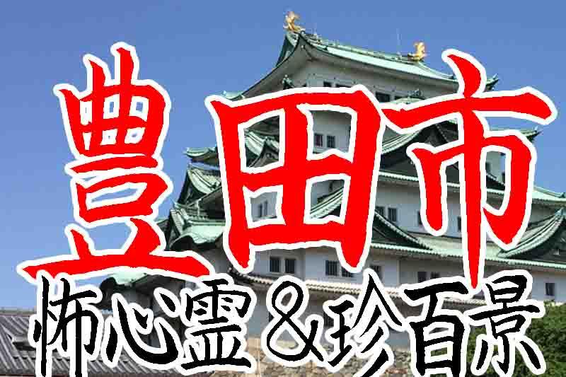 豊田市心霊スポット&珍百景B級スポット