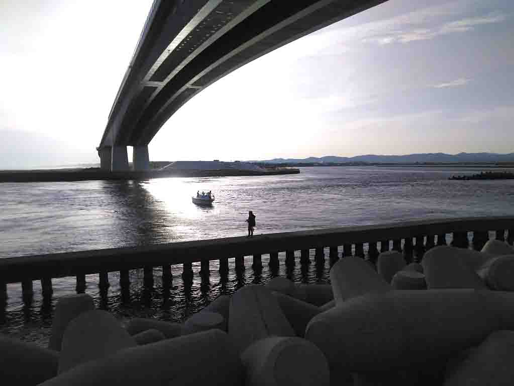 浜名湖クロダイ(チヌ)釣り