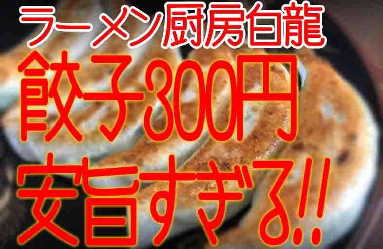 ラーメン厨房白龍の浜松餃子はニンニクが効いた王道餃子!めっちゃ安くて美味しい♪