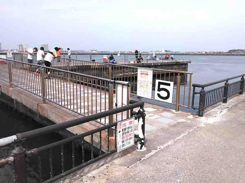 浜名湖海釣り公園サビキ釣り