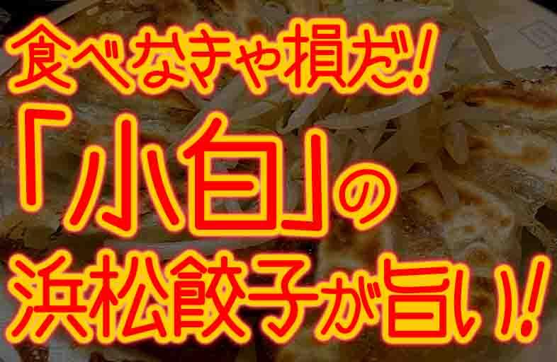 浜松餃子の小白は安くて美味しい!コレこそ浜松餃子の王道だ