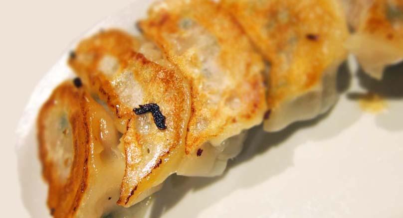浜松餃子が美味しい澄栄