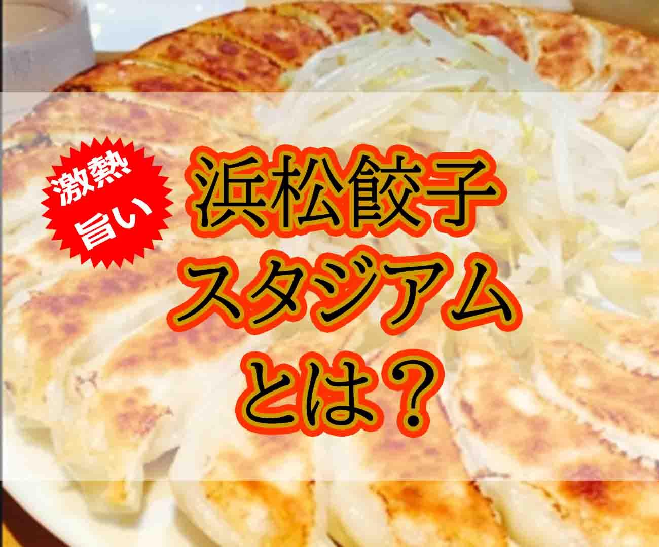浜松餃子スタジアムとは?浜松餃子が9店舗集まった激熱ポイントだった
