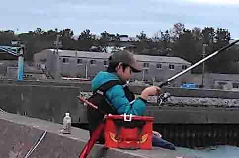 紀州釣りダンゴ配合