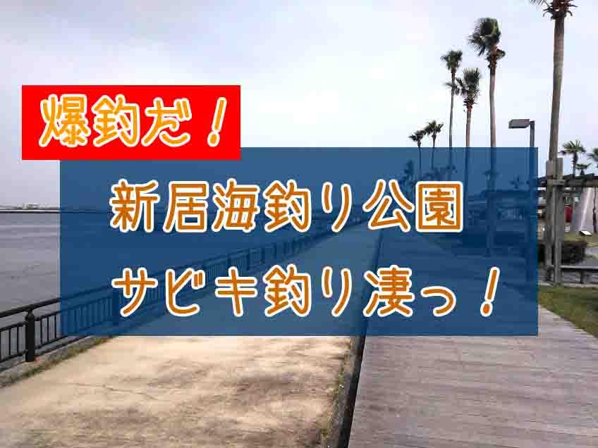 浜名湖海釣り公園サビキ爆釣