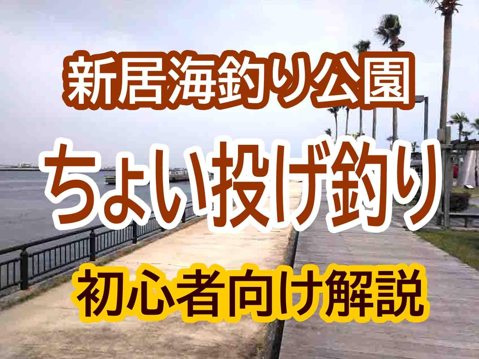 新居海釣り公園でちょい投げ釣り