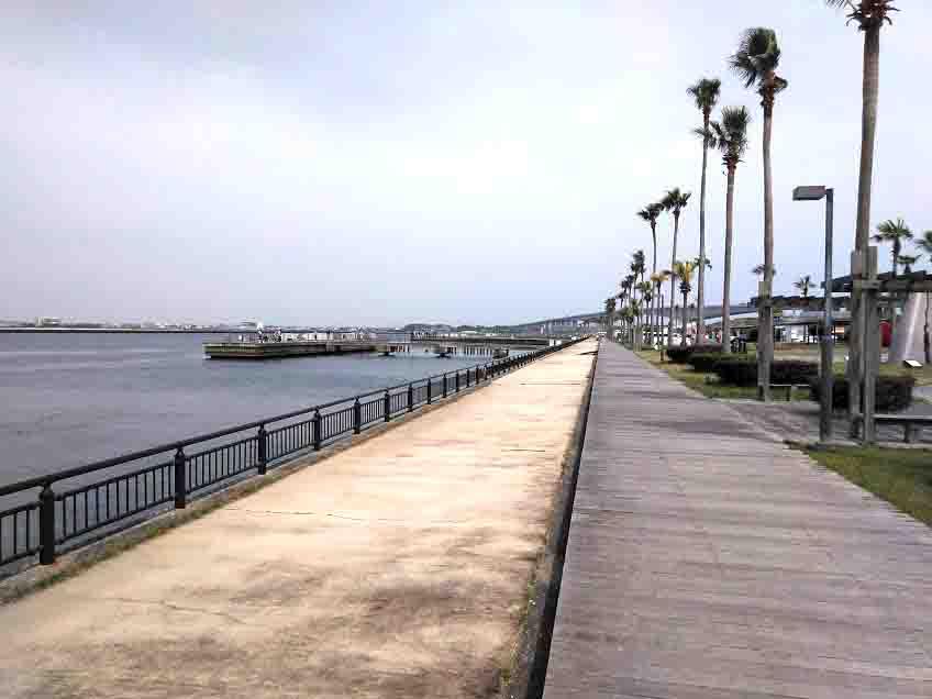 渚園から新居海釣り公園