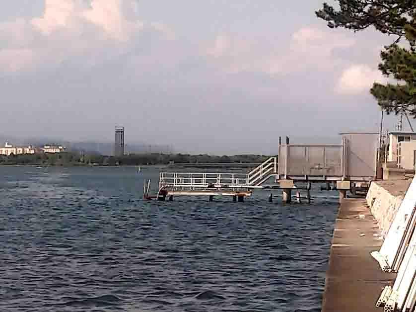 新居海釣り公園ちょい投げ釣り