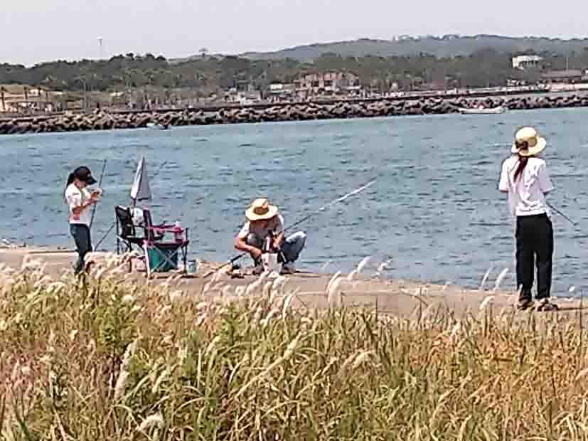 浜名湖で釣りキャンプ